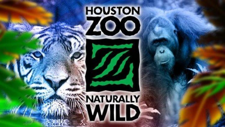 Houston Zoo 750x422 1 1 - Houston Zoo.