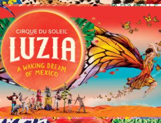 rah 54170865907 1 315x242 - Cirque du Zoleil - LUZIA